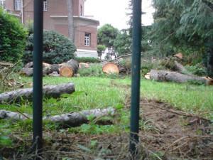 Villa-Alatini-Thessaloniki-trees